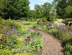"""""""A varied natural garden"""""""